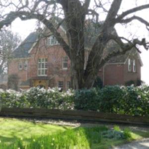 Kingsbury House | Parish of Kingsbury Episcopi