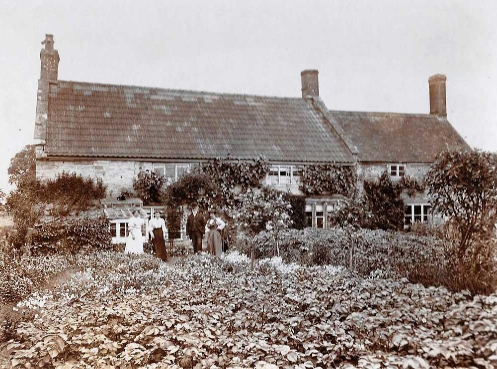 Lock Family   Tom Mounter   Kingsbury Time Travellers   WW1